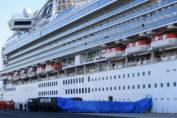 diamond-princess-cruise-ship-japan-coronavirus-2019-ncov